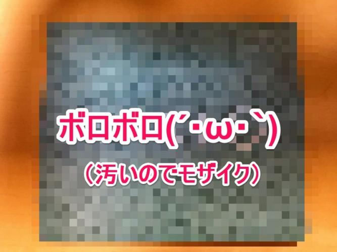 IMG_2293-2